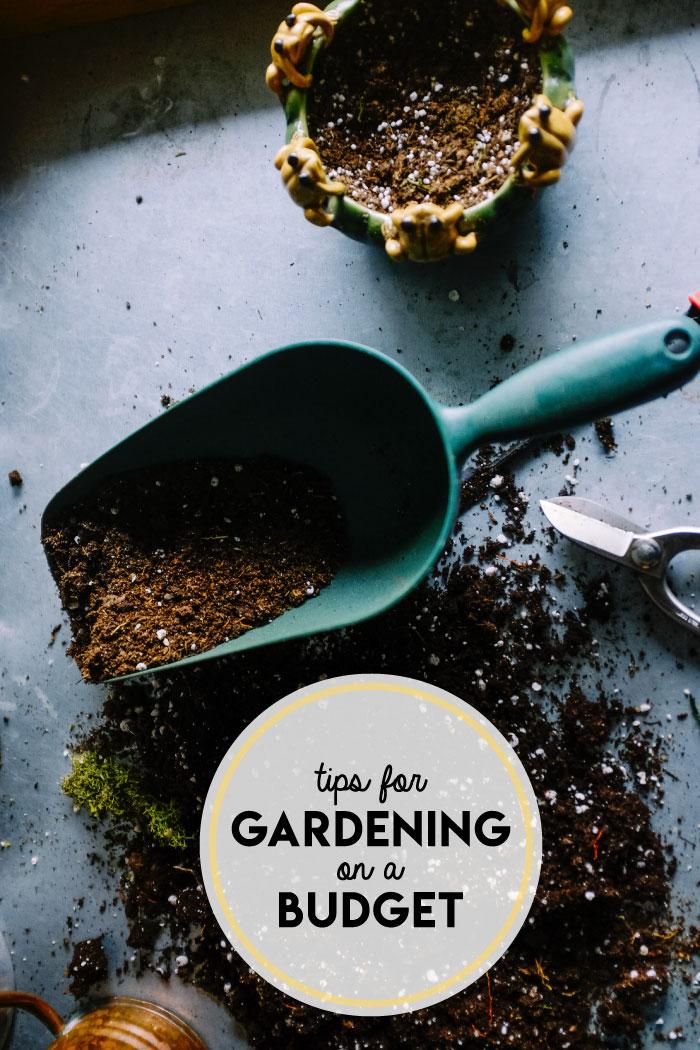 gardening-on-budget.jpg