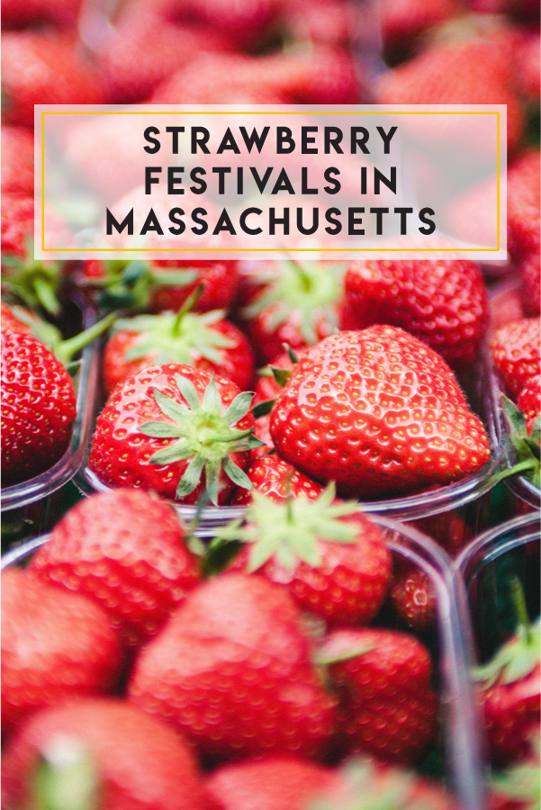 Looking for a strawberry festival in Massachusetts? June is the time!