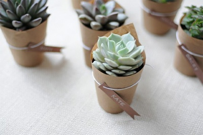 Creative kraft paper wrapping ideas: plant wrappers