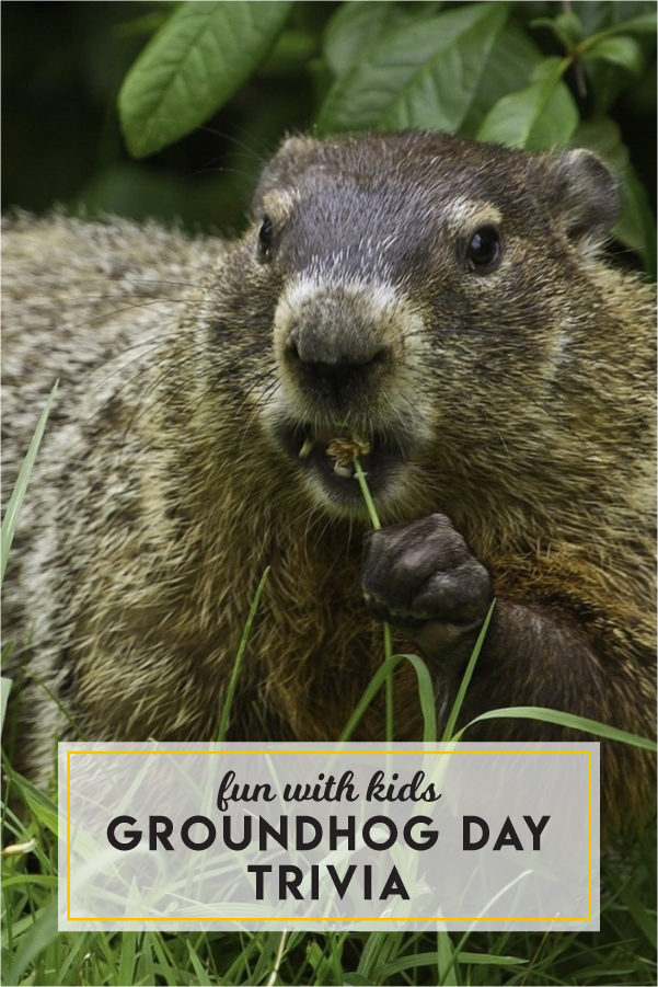 Fun with kids: Groundhog Day trivia