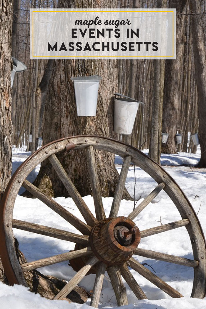 Maple sugaring and syrup events in Massachusetts