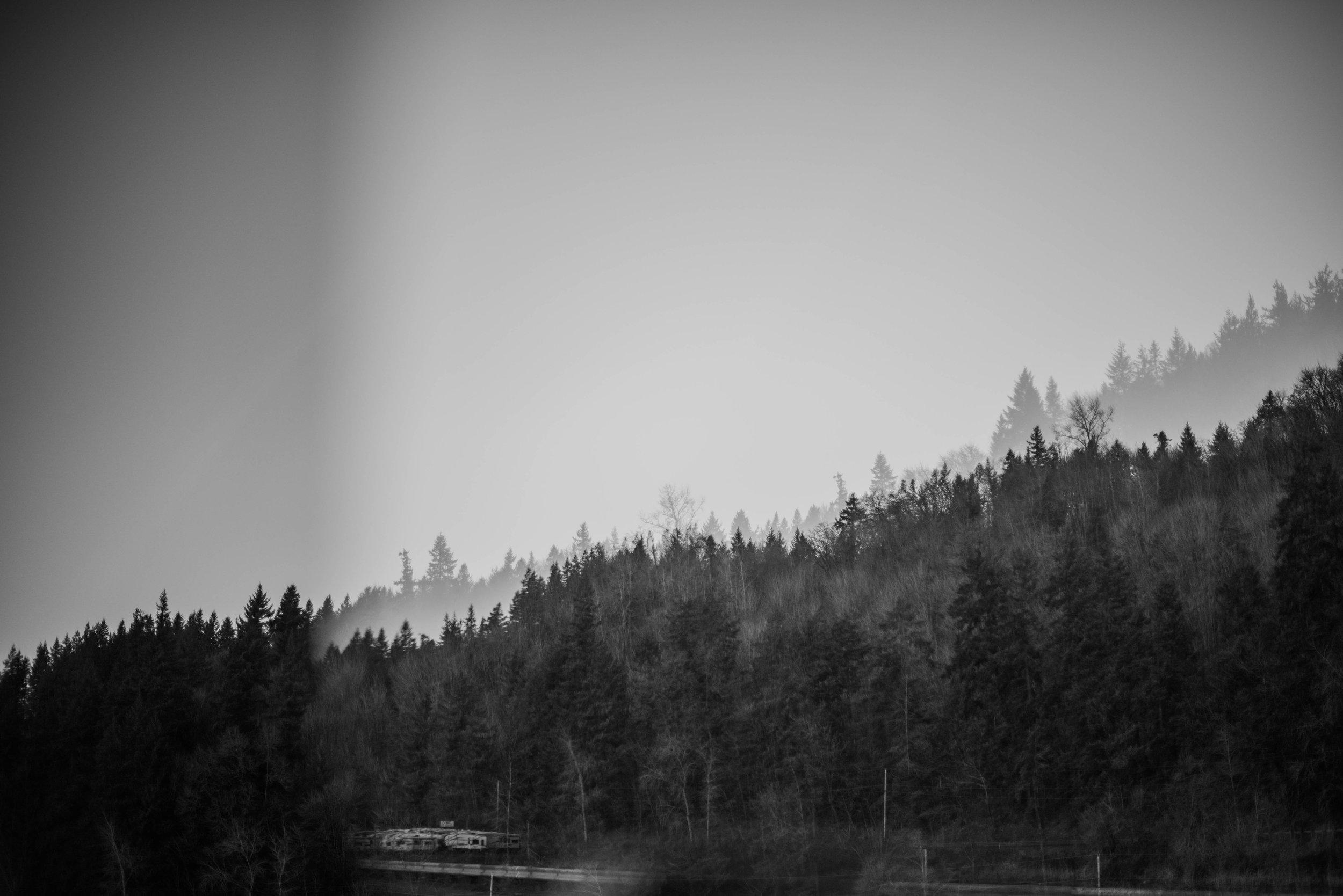 Portland_Photographer.jpg