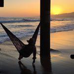 hammockliving.jpg