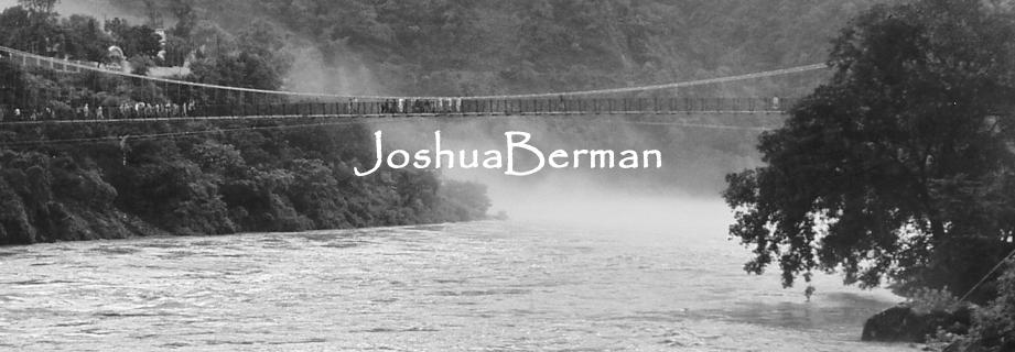 Berman-banner.jpg