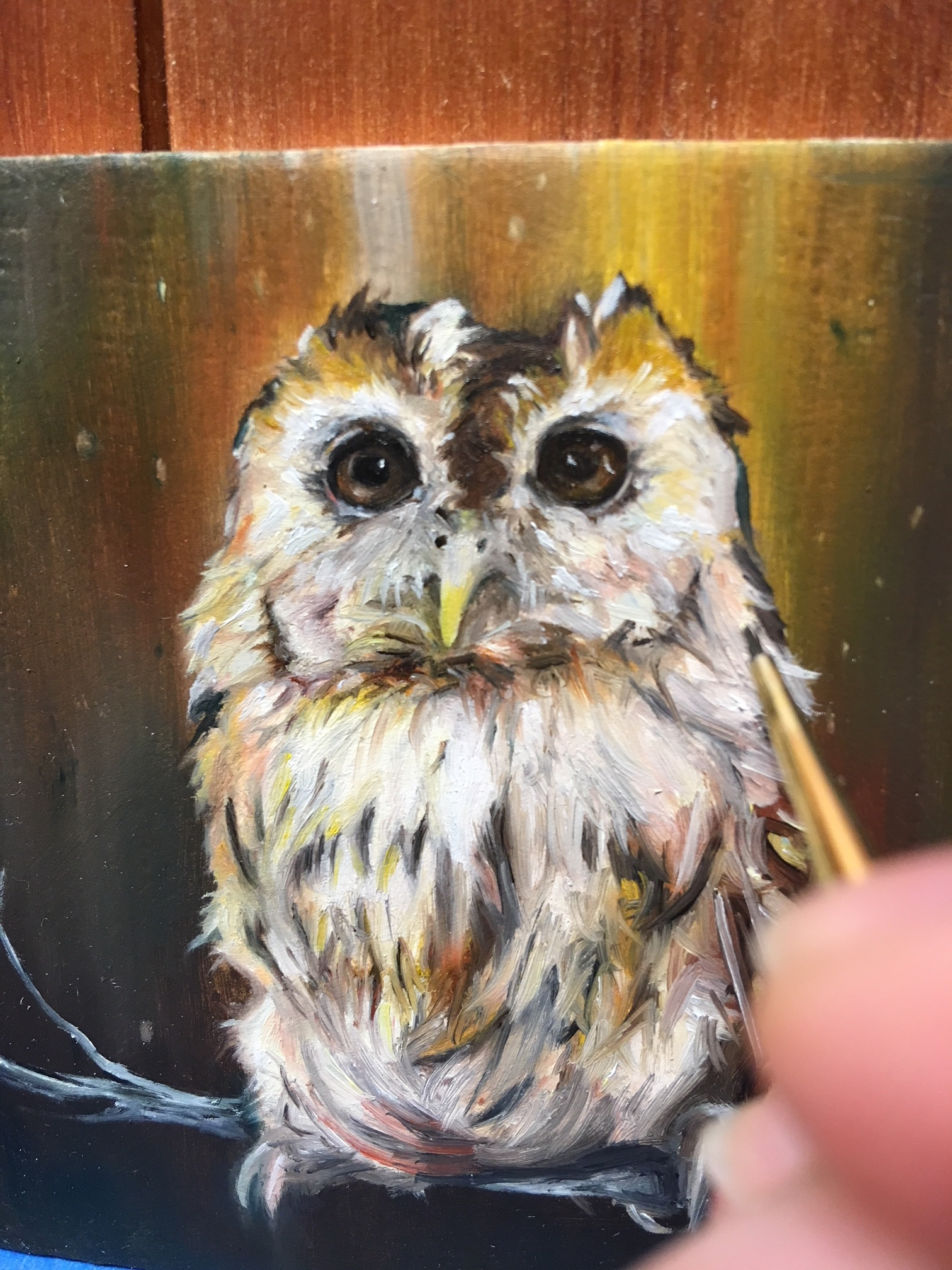 "Hoot   | Oil on Board | 3 x 3"" Panel mounted on 4 x 4"" Panel"