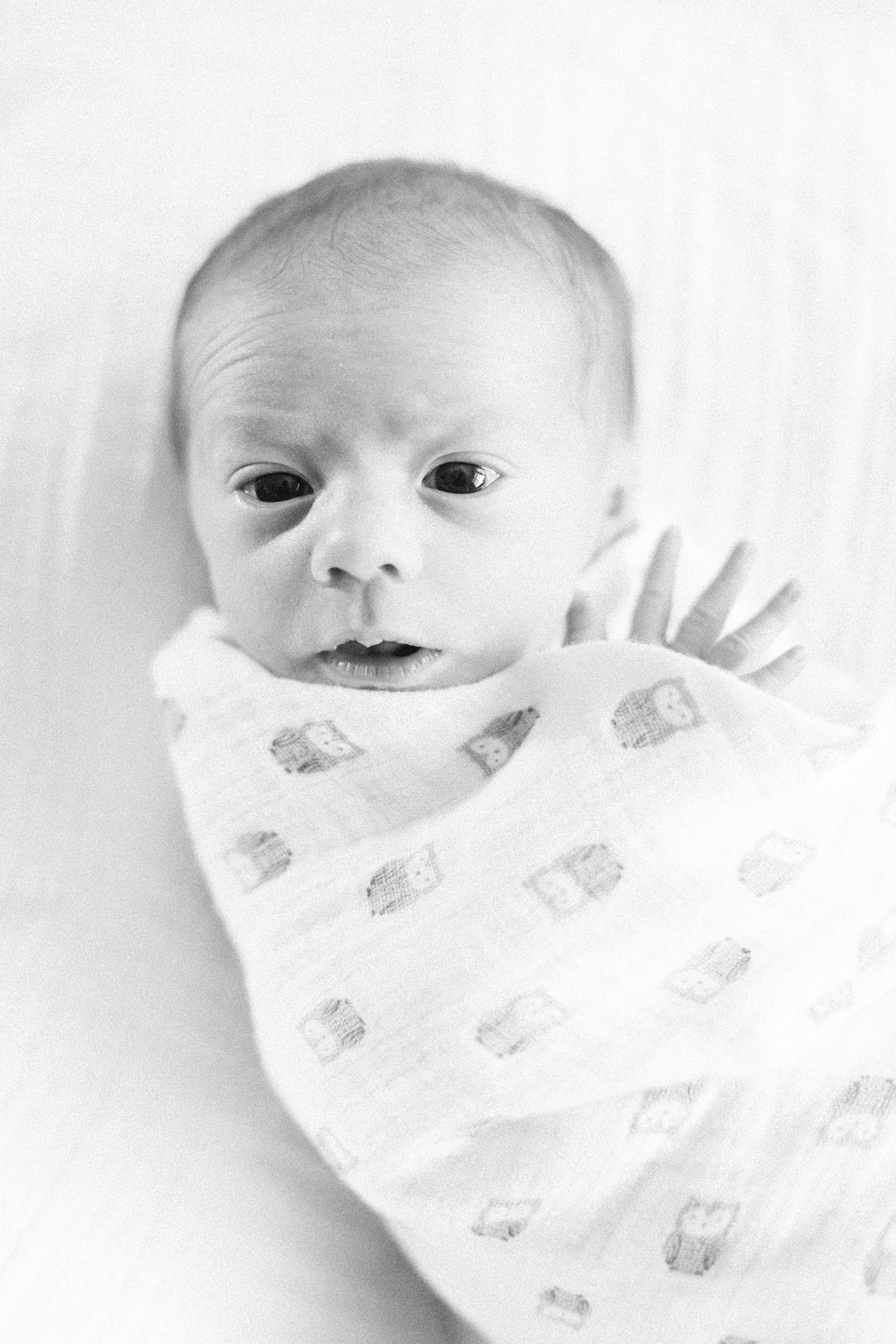 001_Everett2016Mar12BW.jpg