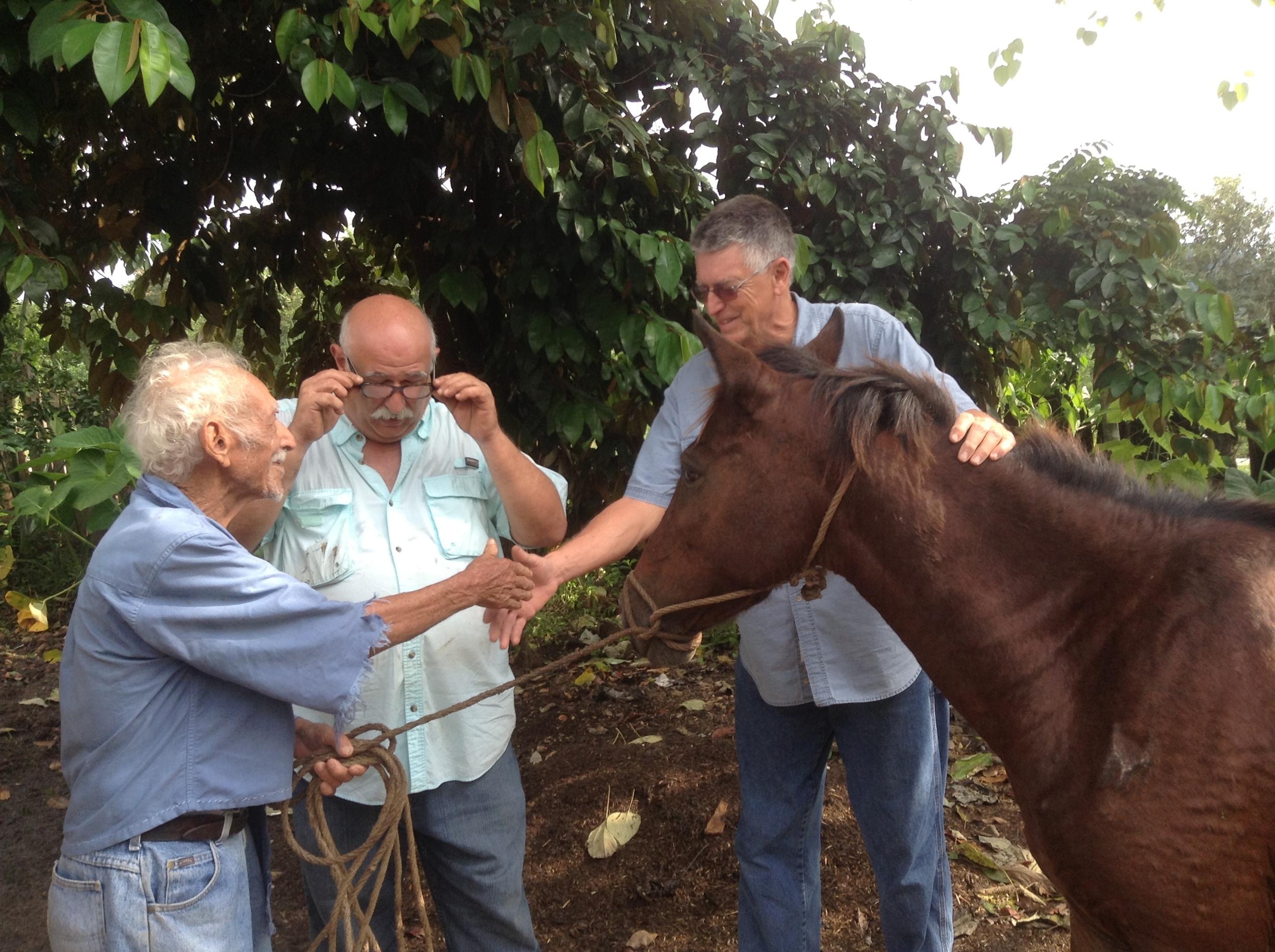 Delmi and Horse Gift 043.jpg