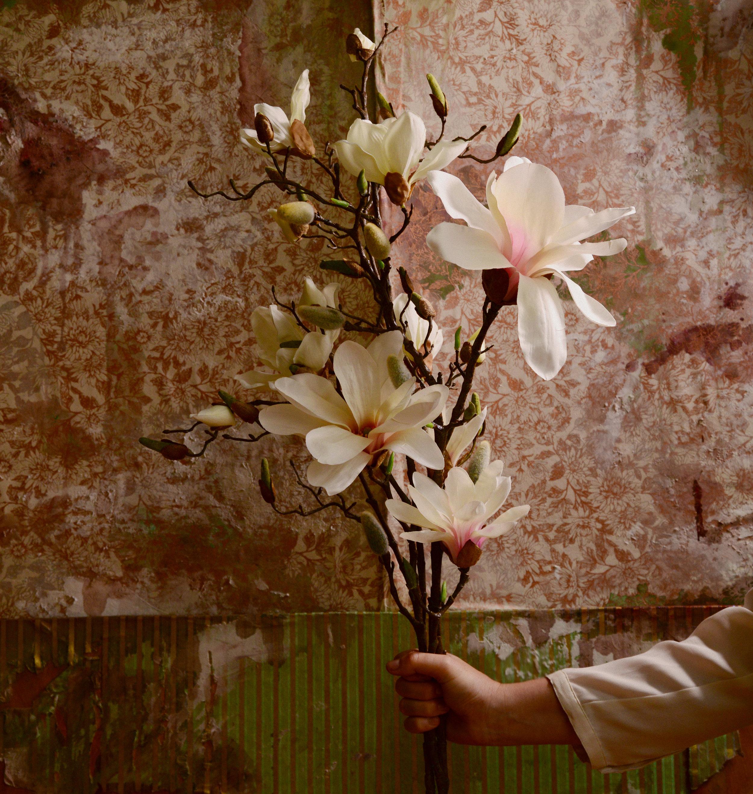 Letitia VanSant  // Promo Photoshoot   Faux distressed backdrop // Props // Styling   Photo by  Shervin Lainez