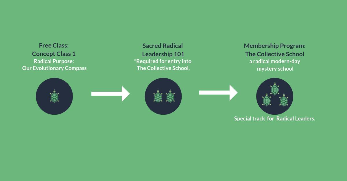 SRL_how we work_horizontal_green.png