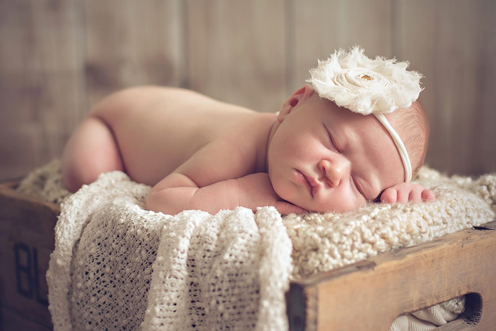 newborn-soft-studio-posed-123.JPG