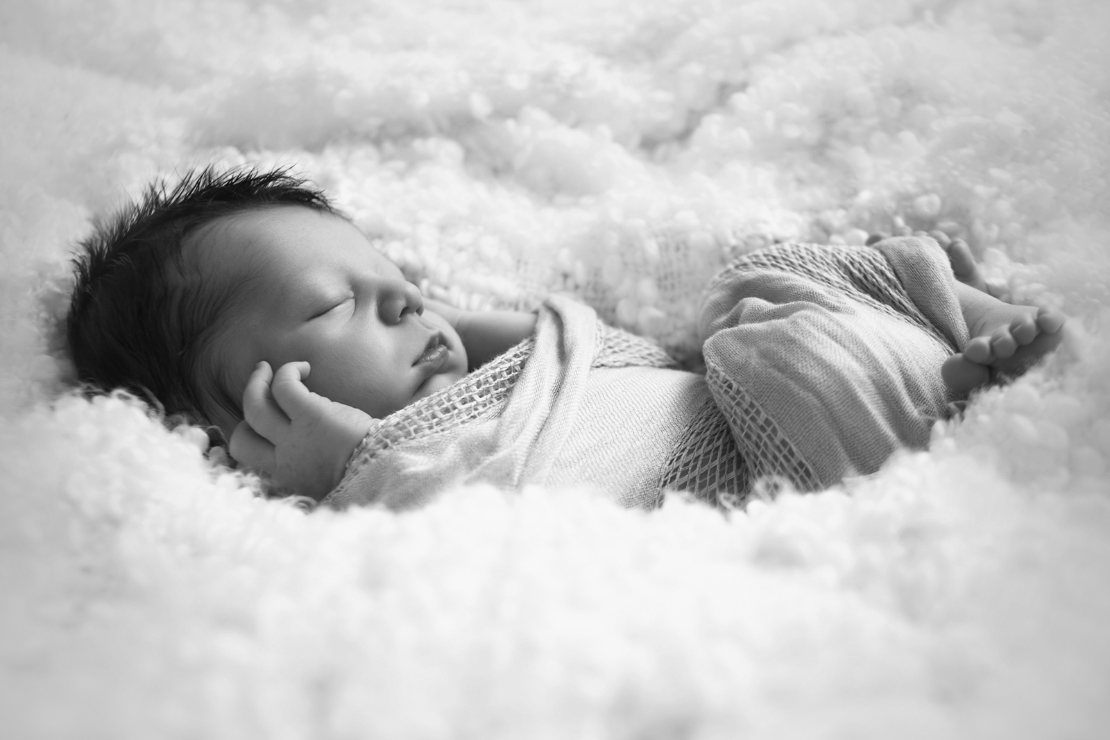 newborn-soft-studio-posed-175.JPG