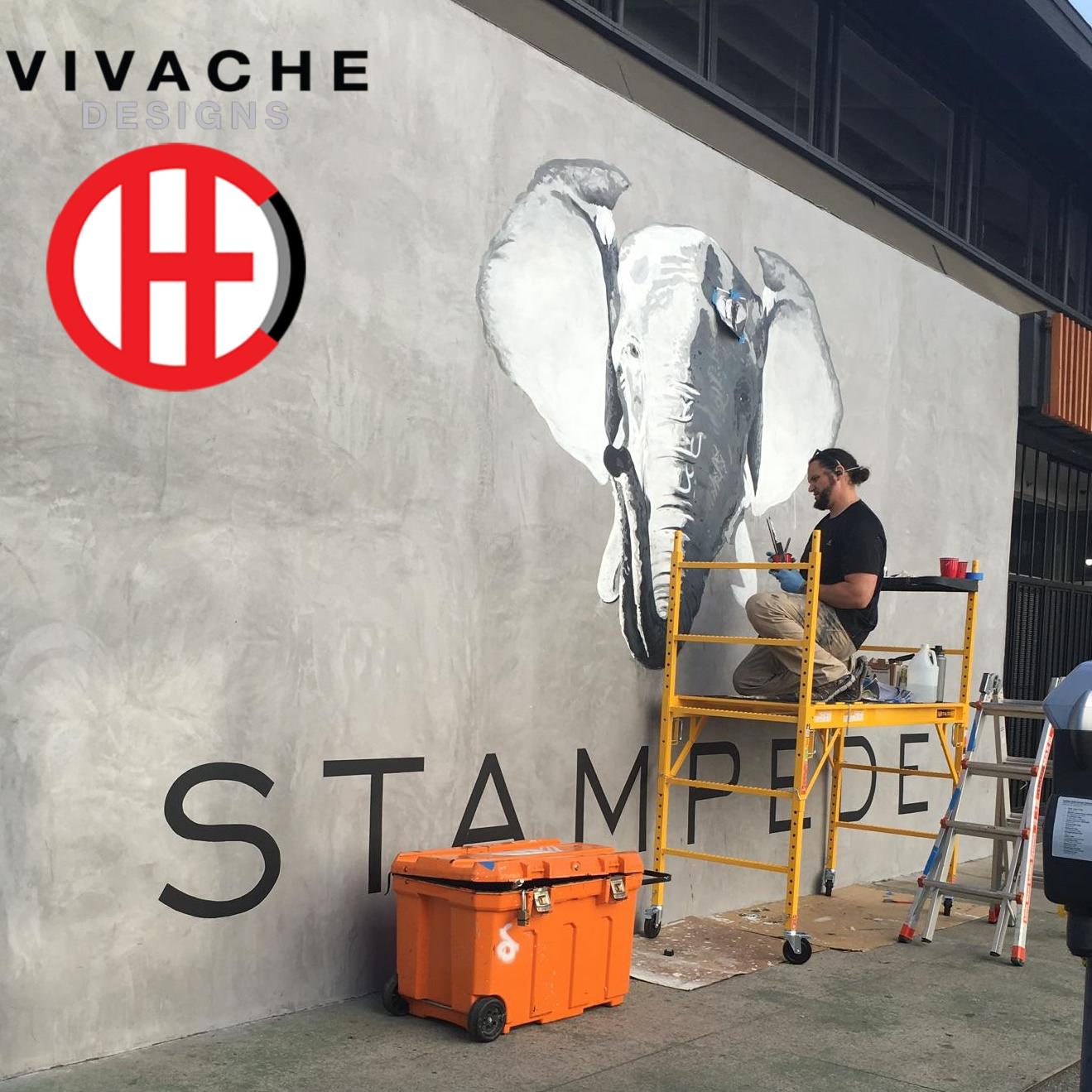 Mural Painter Vivache Designs Custom Mural Painting