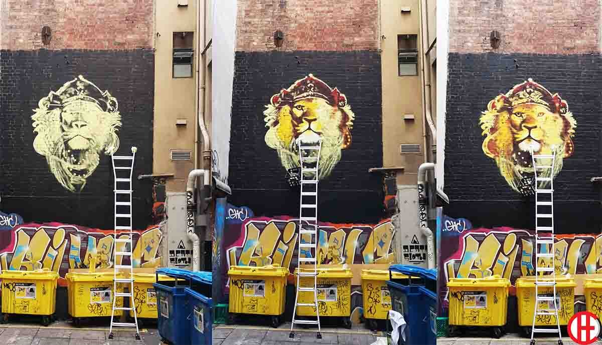 Mural Painter Mural Artist Che Muralist Street Artist Wall Mural Vivache Designs.jpg