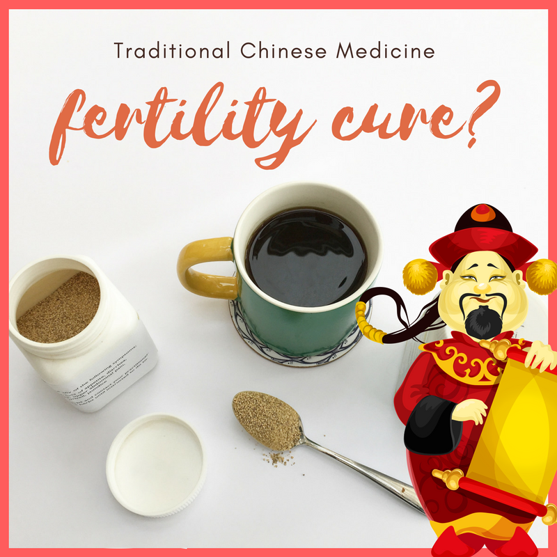 The Preggers Kitchen Chinese medicine for infertility