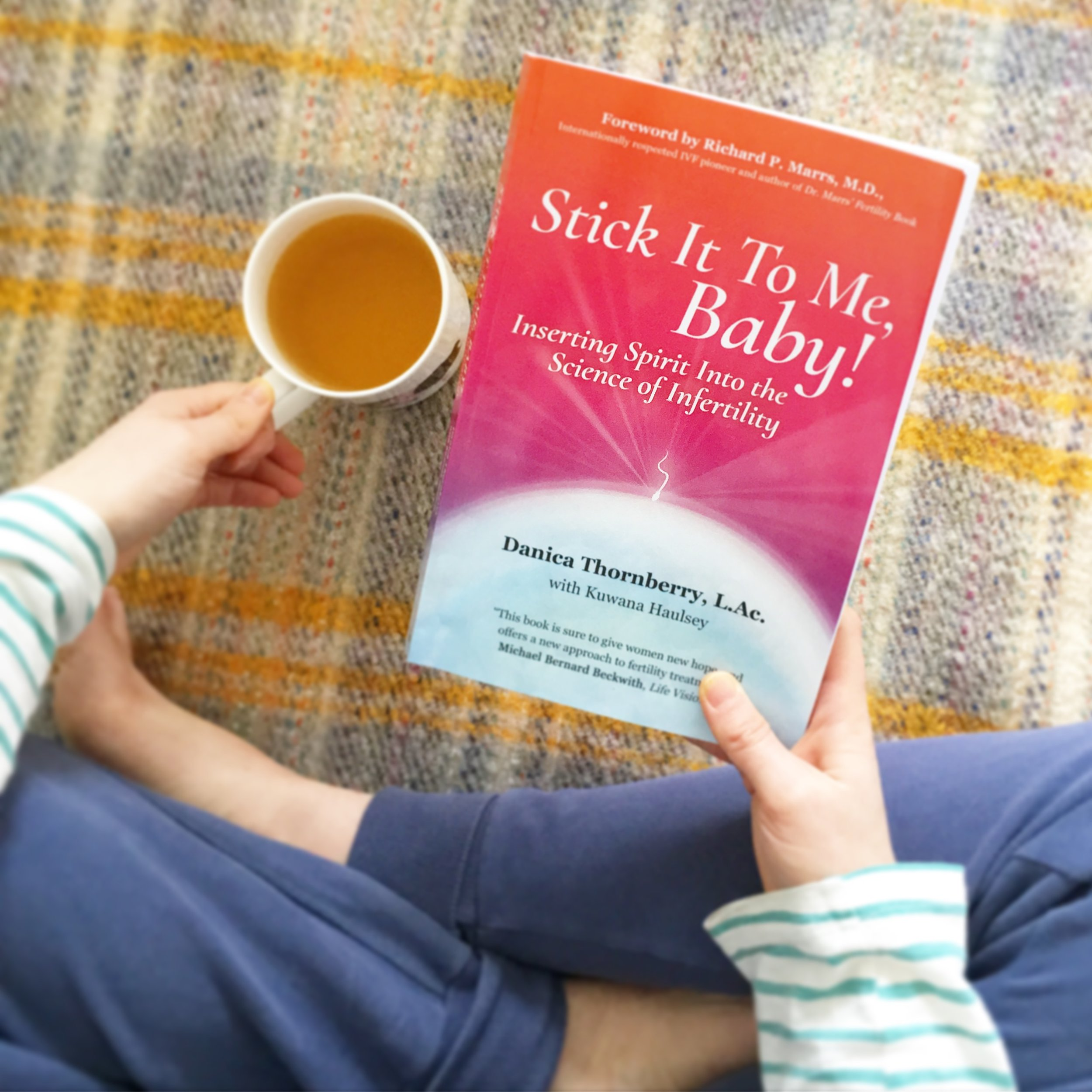 The Preggers Kitchen Shop - Stick It To Me Baby book on infertility