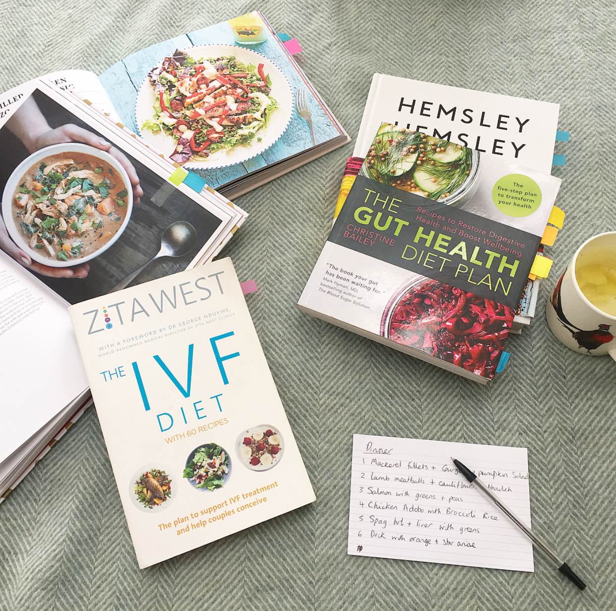 Book Review The IVF Diet by Zita West