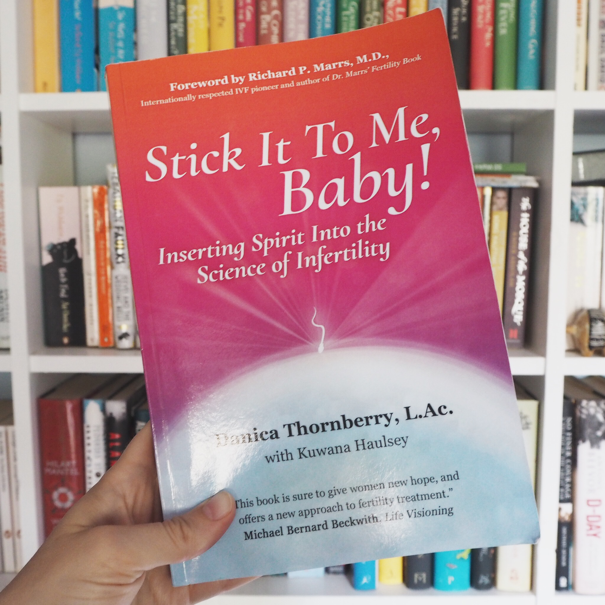 Book Review Stick It To Me Baby by Danica Thornberry