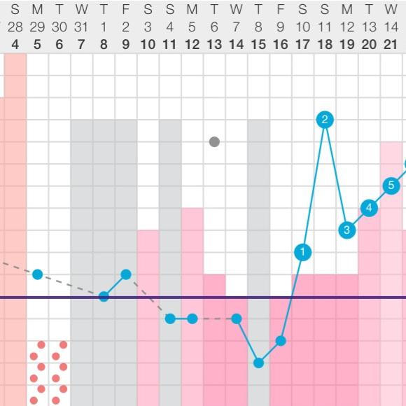 Fertility awareness chart