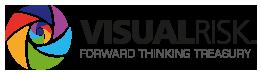 Visual_Risk_logo.png