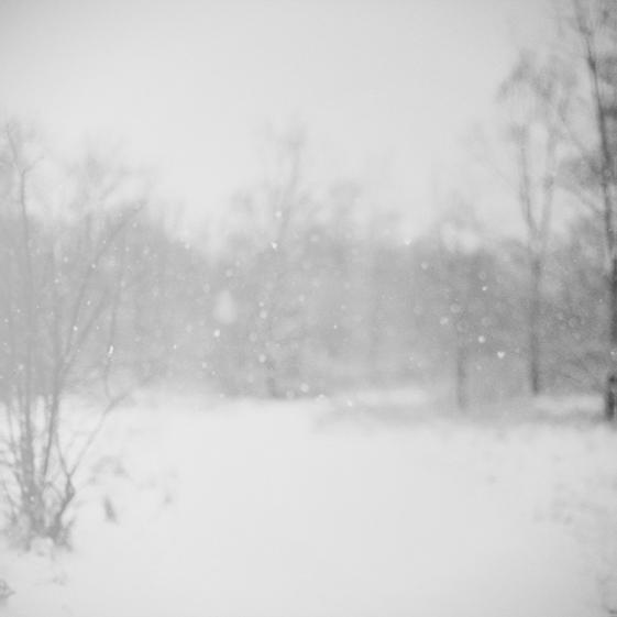 Snow.jpg_effected-002.jpg