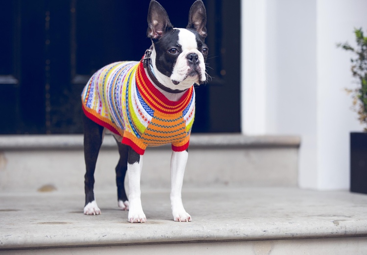 Peruvian+SWeater.jpg