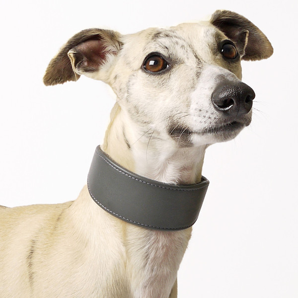 petiquette-bespoke-leather-whippet-collar-02_grande.jpg