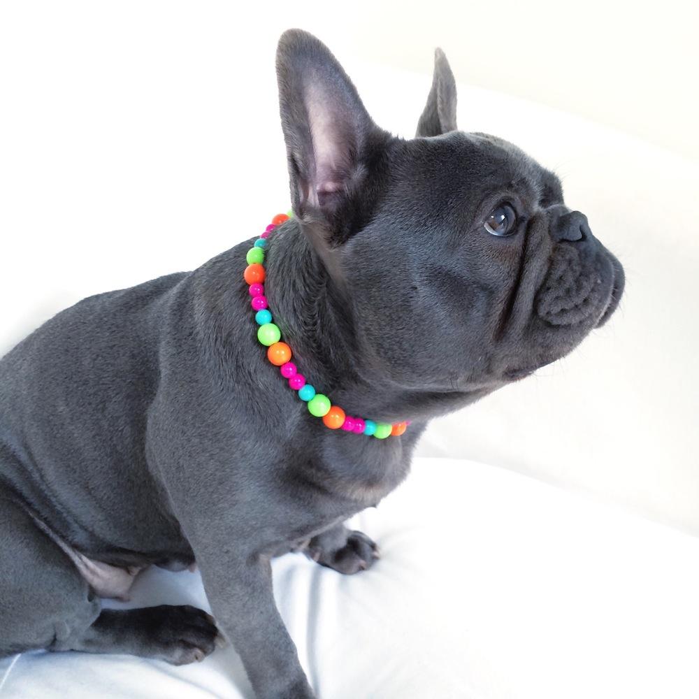 sweet_shop_-_orange__lime__turquoise___hot_pink_beaded_dog-necklace.jpg
