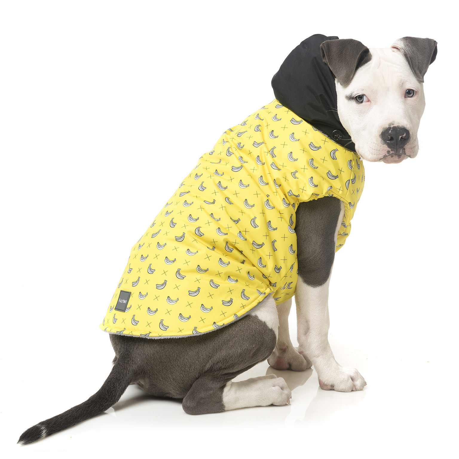 fuzzyard-jacket-parka-monkeymania-dog-1.jpg