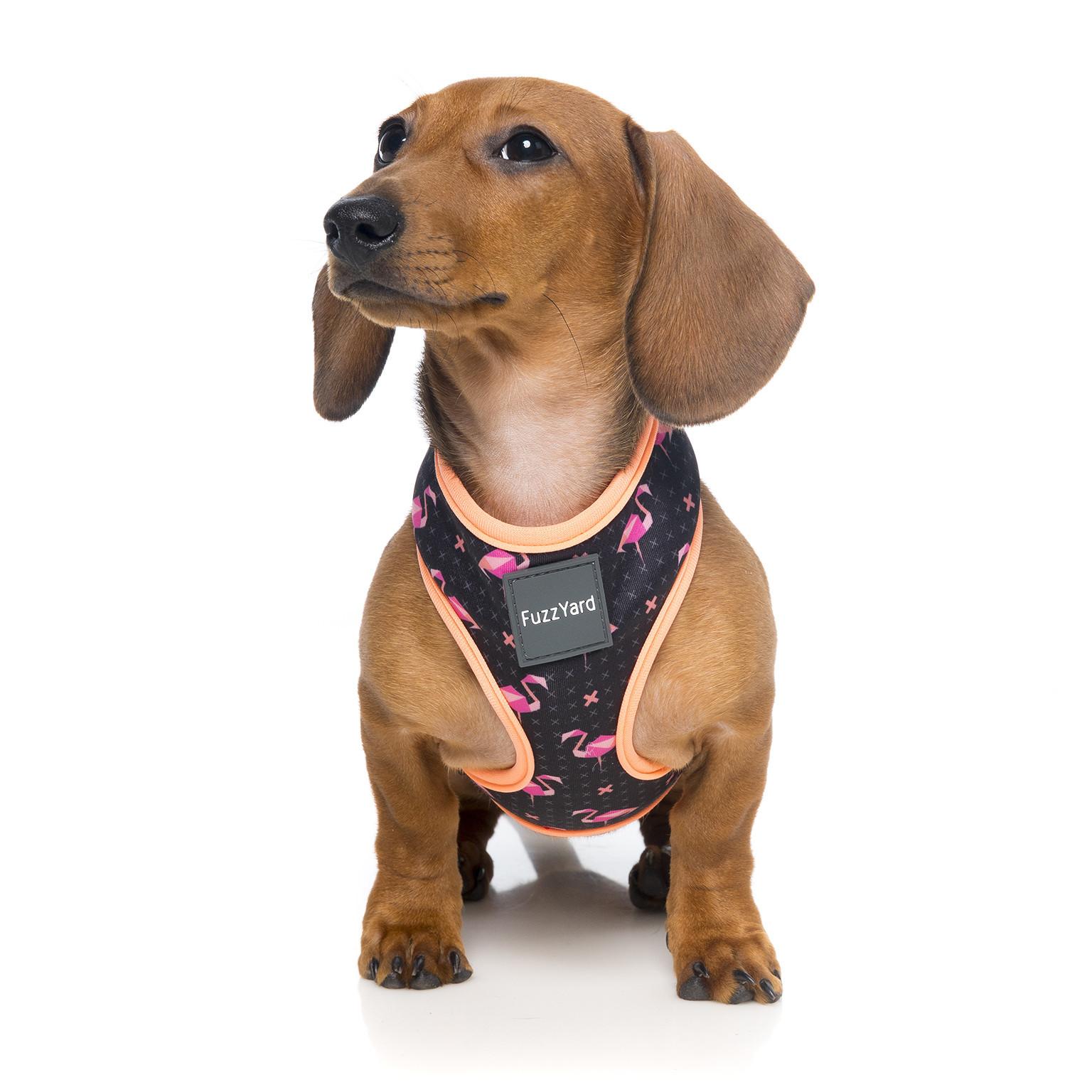 fuzzyard-harness-fabmingo-dog-1.jpg