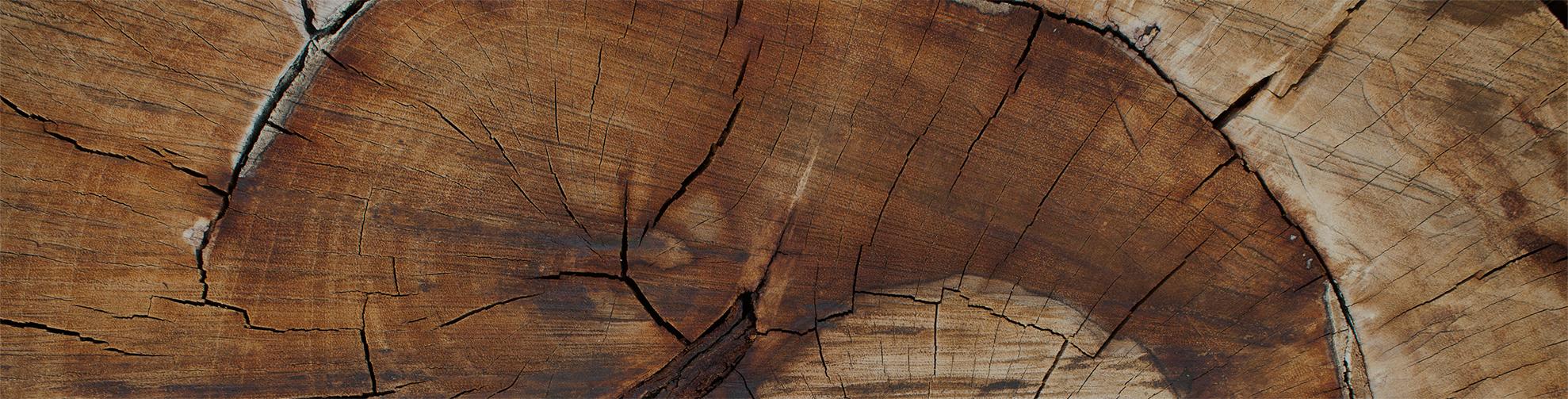 """""""Ett träd växer i 120 år innan det sågas till plank och bräder; då är det viktigt att inte virkestorkningen — den sista och svåraste fasen — äventyrar det ekonomiska utfallet.""""    —Johnny Lindström,  Produktionsledare på Setra, Malå"""
