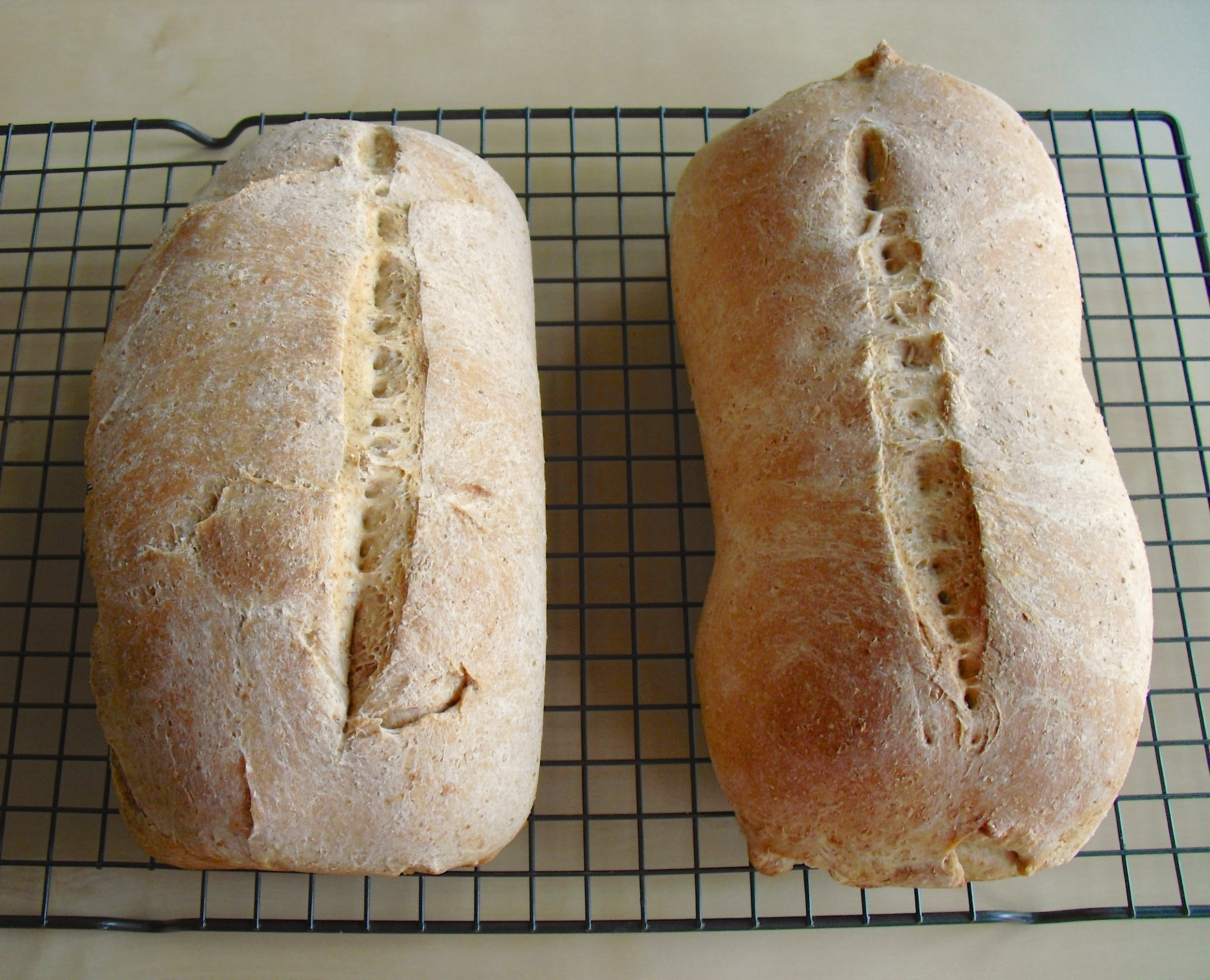 Bread-3.jpg