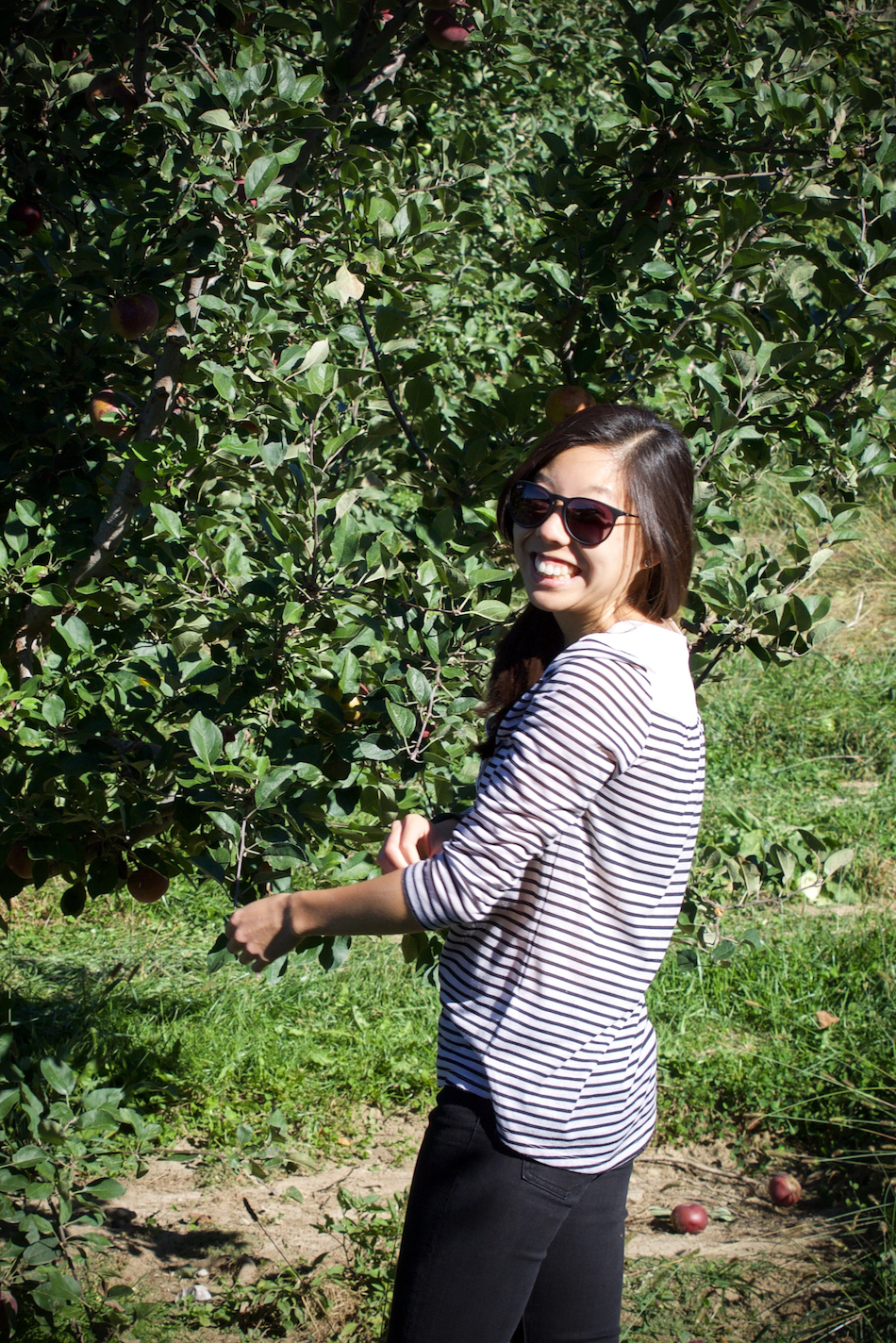 Anderson orchard 14.jpg