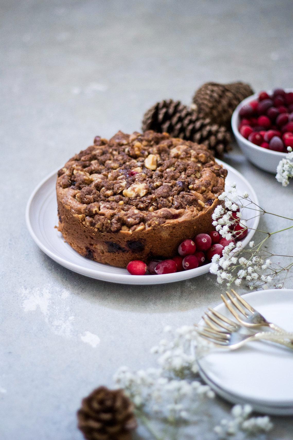 Cranberry coffee cake 2.jpg