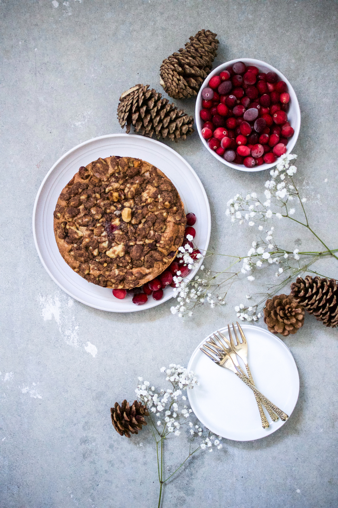 Cranberry coffee cake 1.jpg