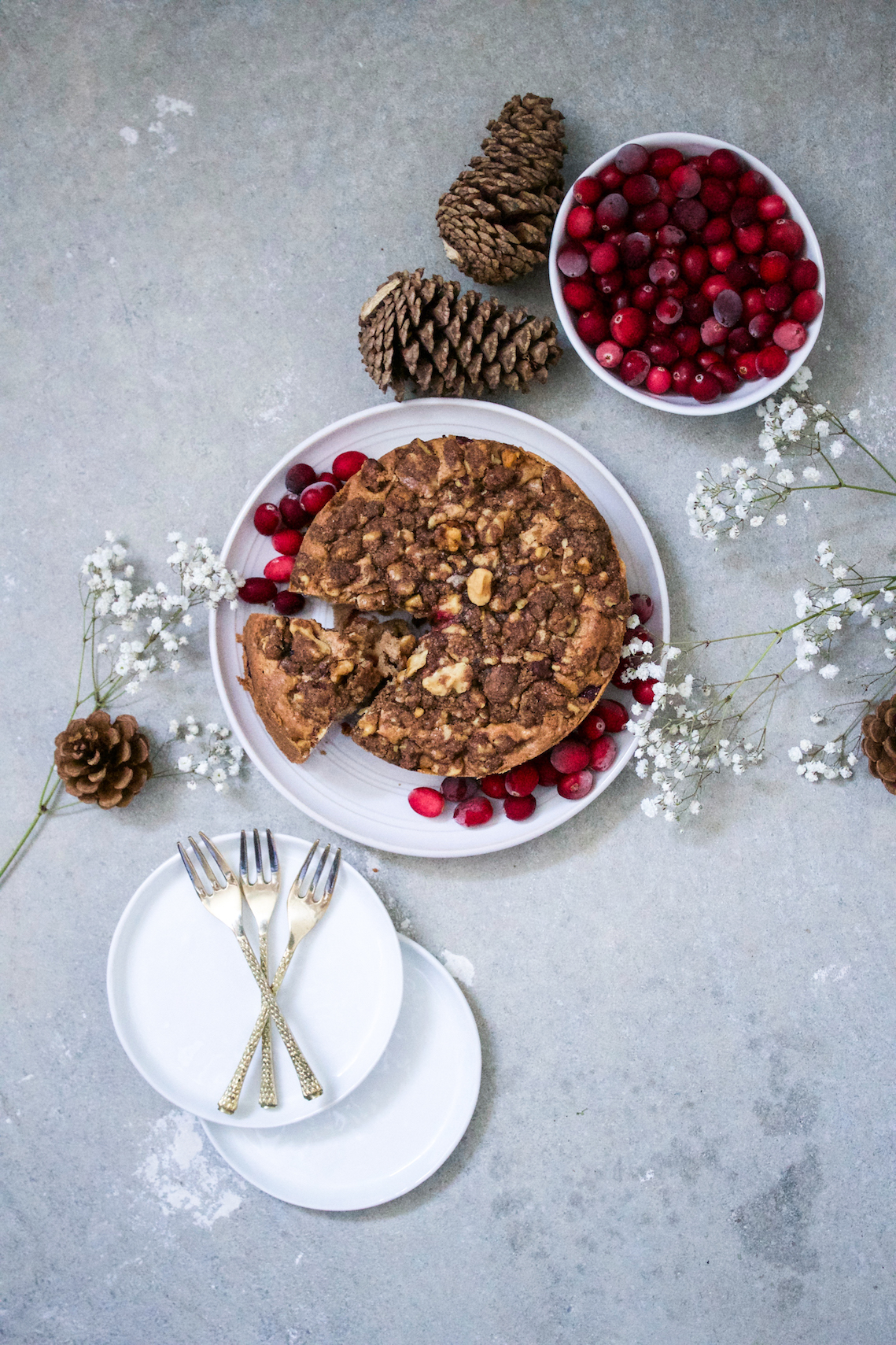 Cranberry coffee cake 7.jpg