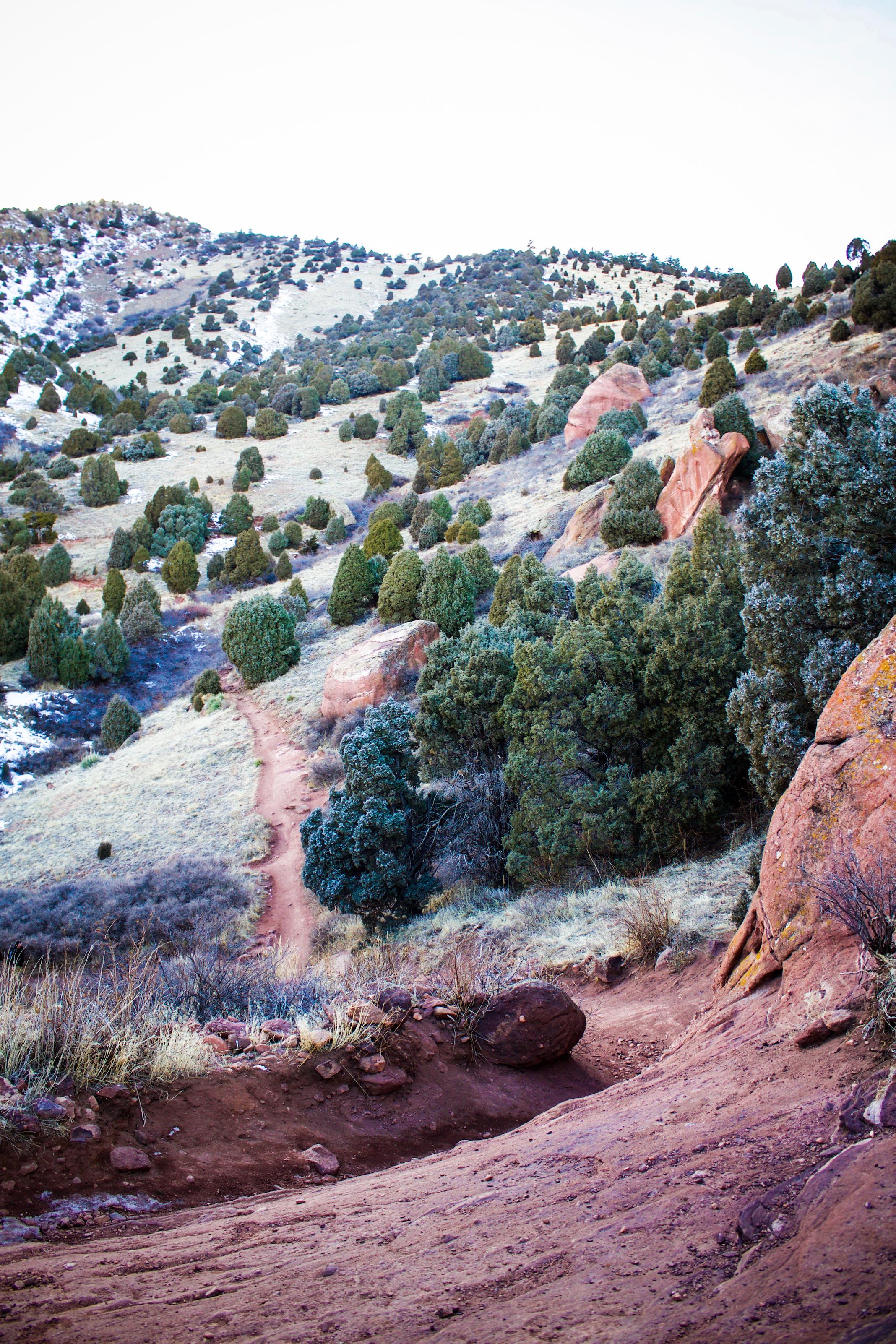 Red Rocks 21.jpg