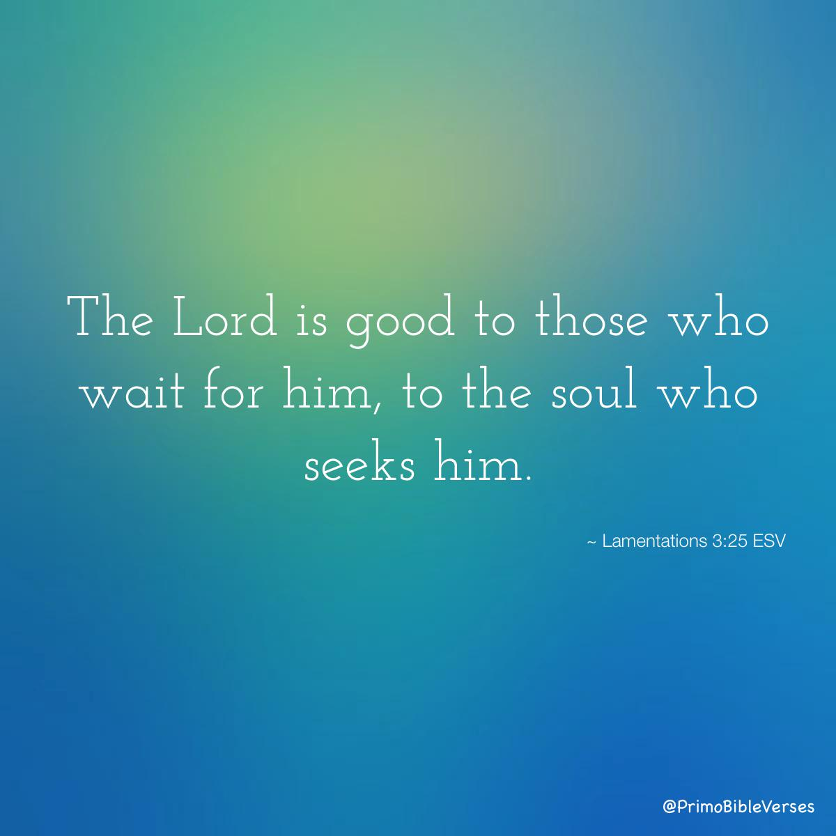 the-lord-is-good-to-those-who-wait-for-him-to-the-soul-who-seeks-him-esv13627.jpg