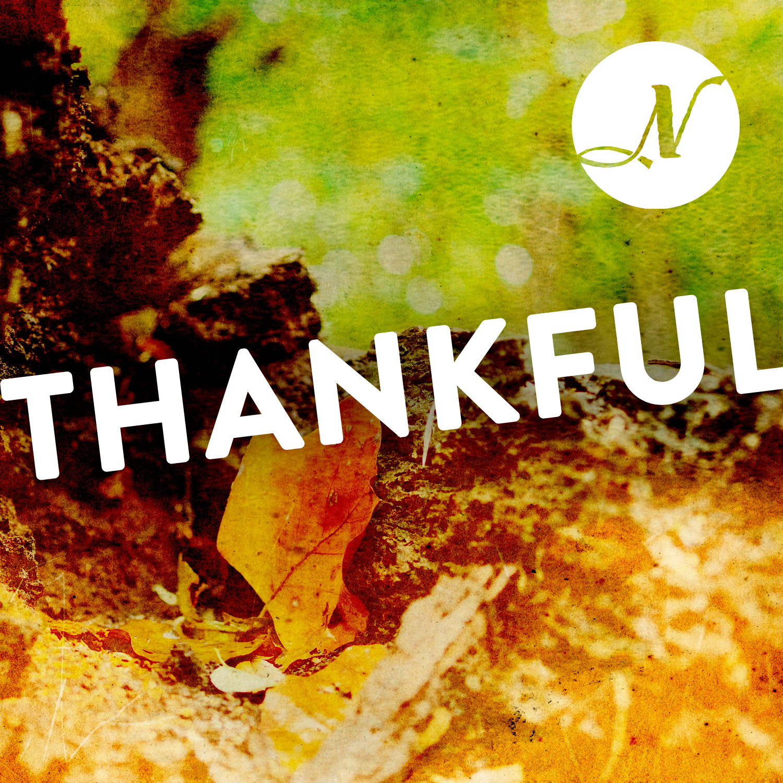 Thankful(Square).jpg