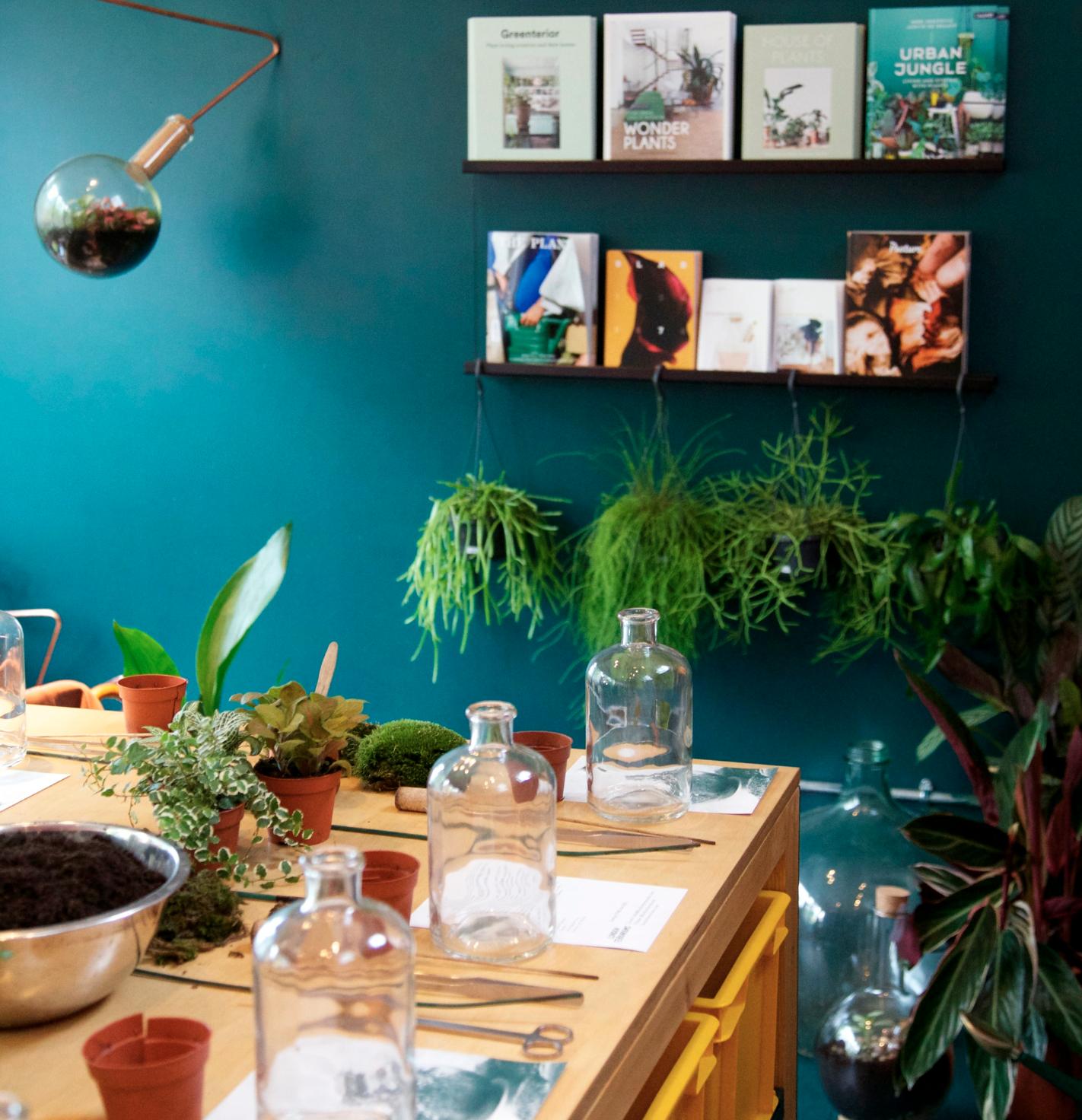 terrarium - Plantecaféen er vores butik, showroom og café.Indsæt beskrivende tekst.Learn more ➝