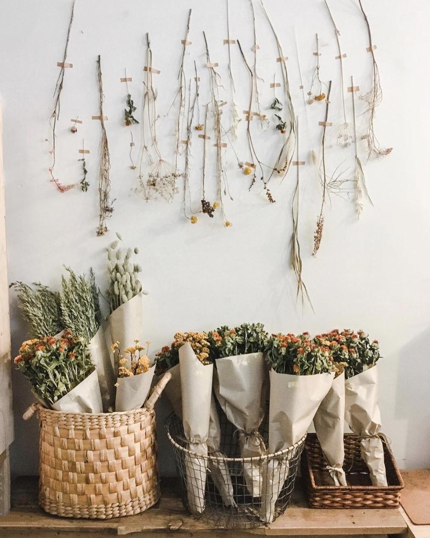 svævendeplanteskyer - Plantecaféen er vores butik, showroom og café.Indsæt beskrivende tekst.Learn more ➝