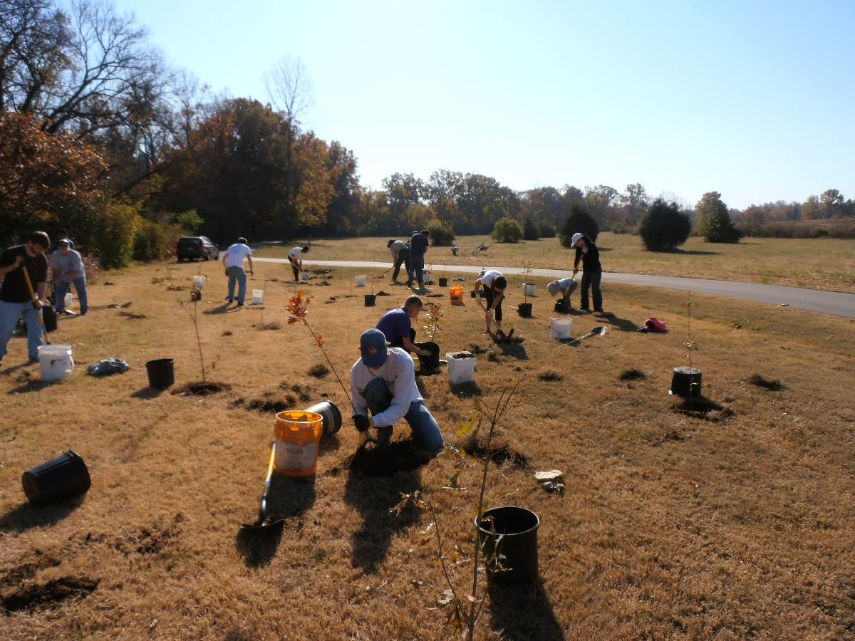 Voulunteers planted hundreds of trees along the mainsteam of Mill Creek at Ezell Road Park's Mill Creek Greenway.