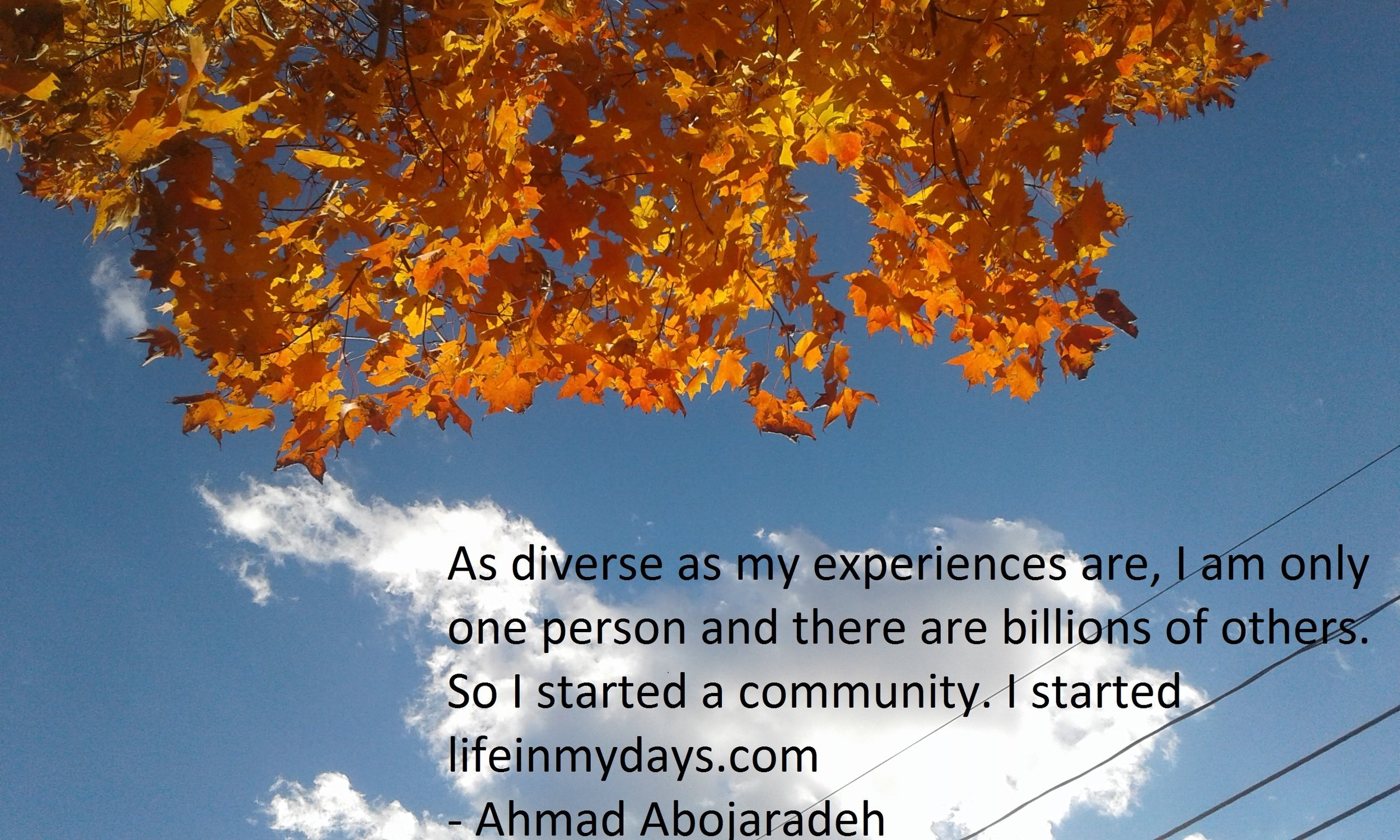 Photo Description: Brilliant orange leaves on a tree across the top of the photo and blue sky with shining cloud across the bottom