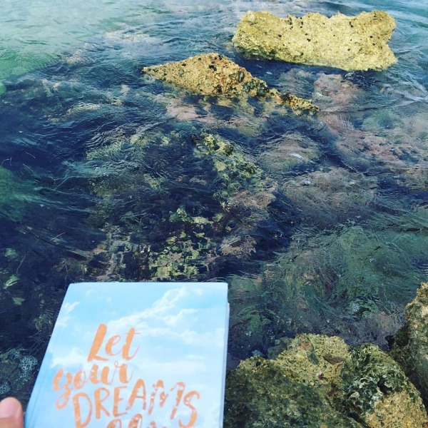 Photo description: A Let Your Dreams Fly notebook floats above very shallow and rocky water.