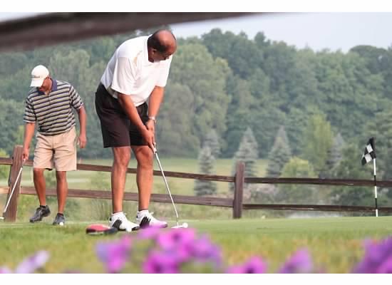 Golf 6.jpg