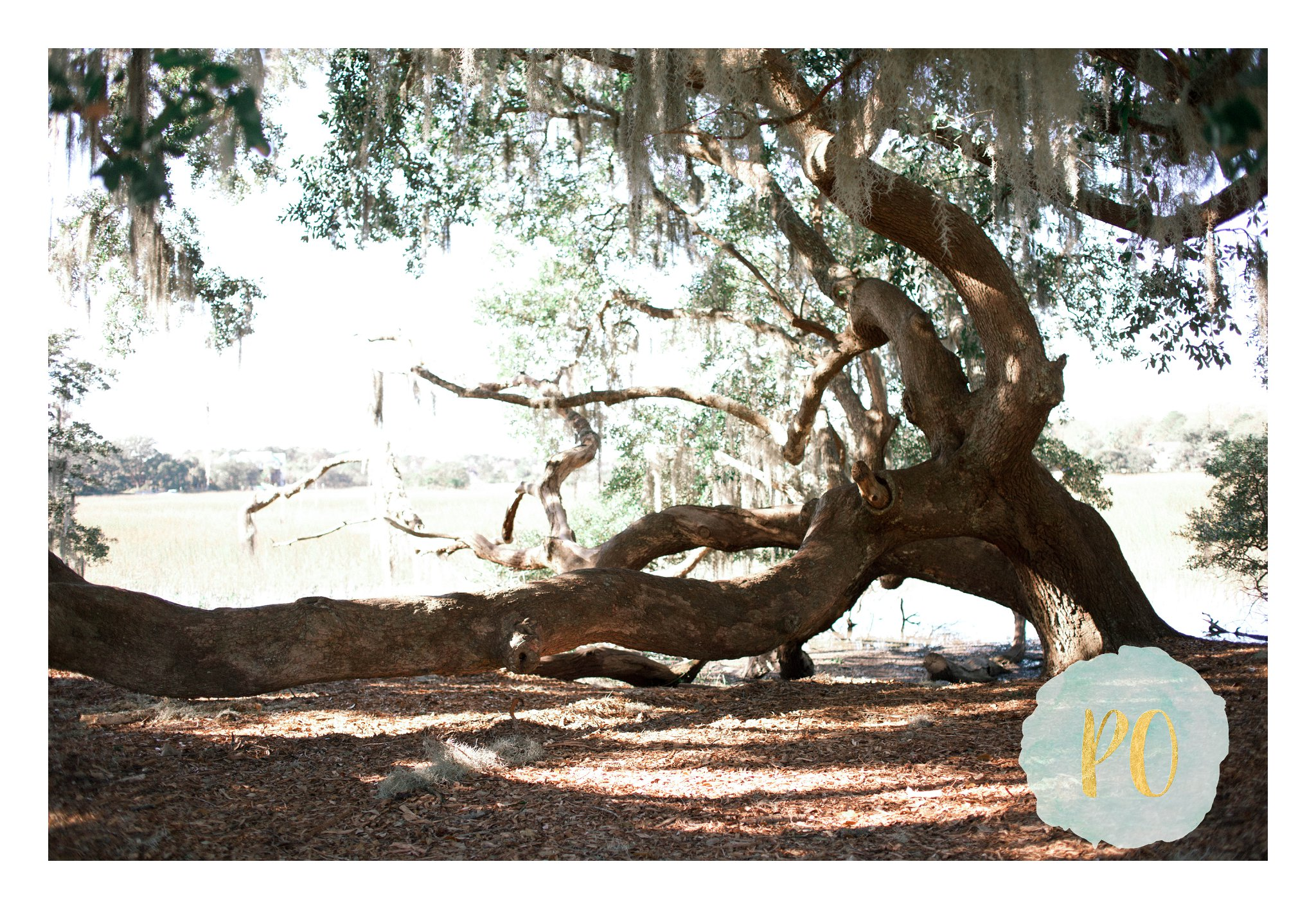 boone_hall_poured_out_photography-25_WEB.jpg