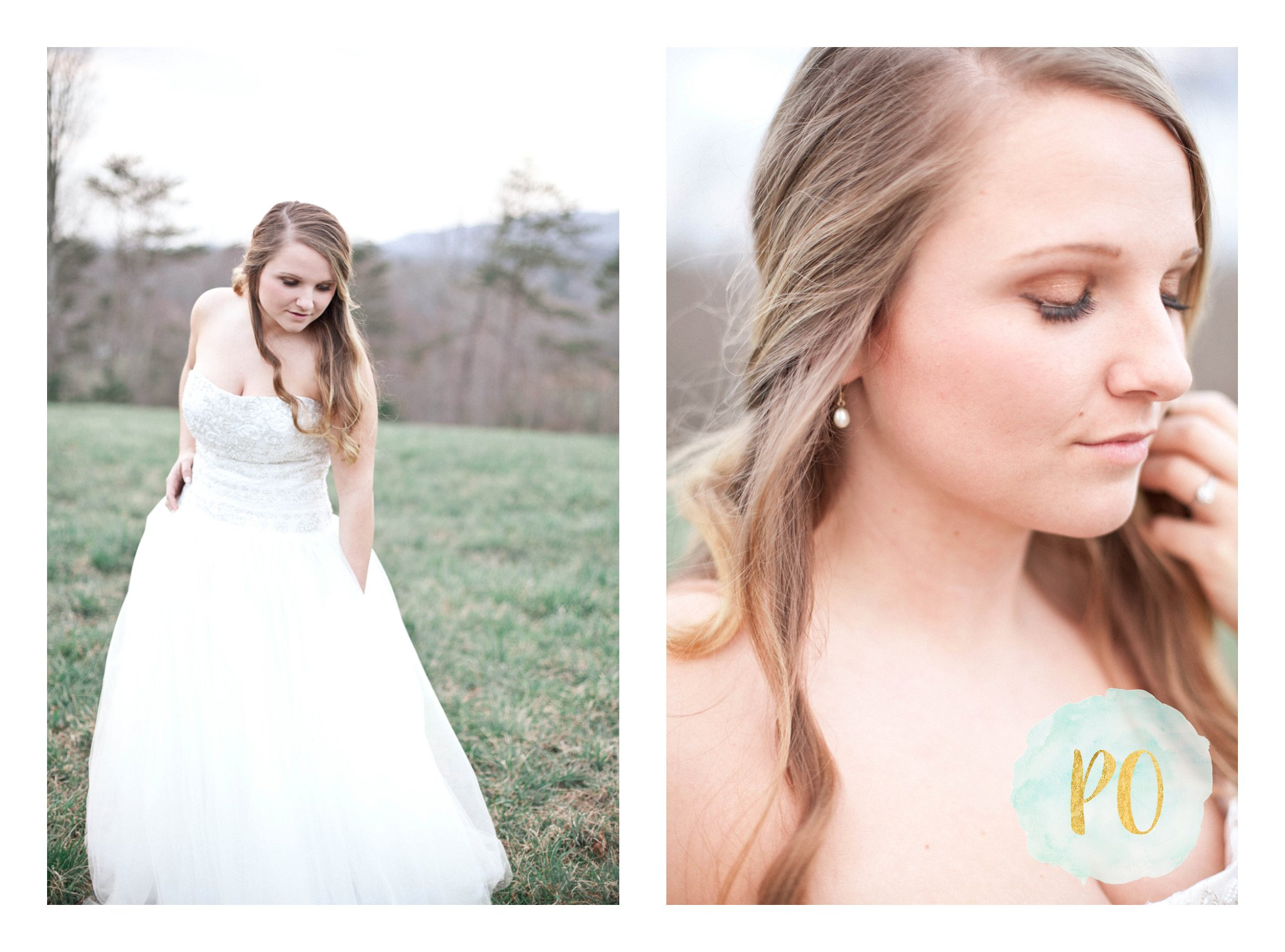 outdoor-landrum-greenville-sc-bridal-wedding-photos_0011.jpg