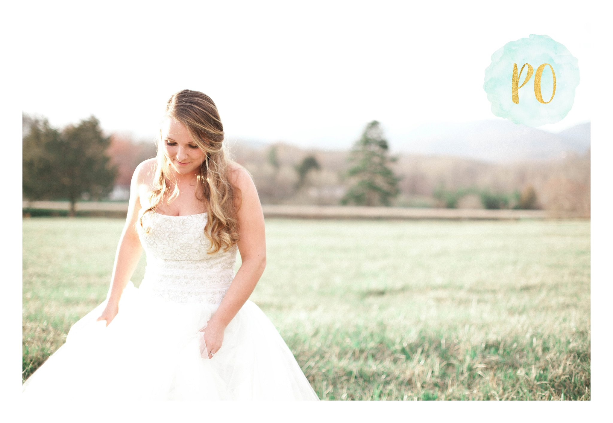 outdoor-landrum-greenville-sc-bridal-wedding-photos_0016.jpg