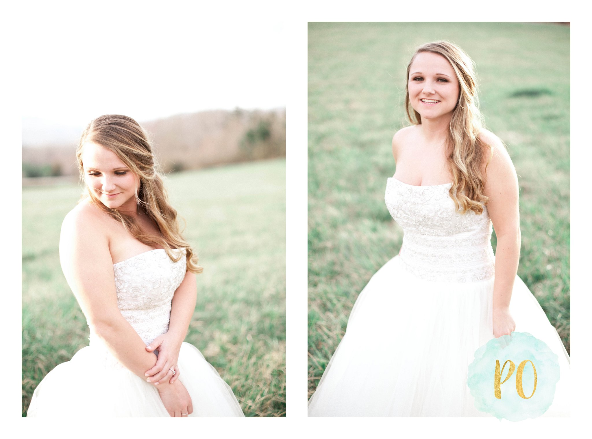 outdoor-landrum-greenville-sc-bridal-wedding-photos_0032.jpg