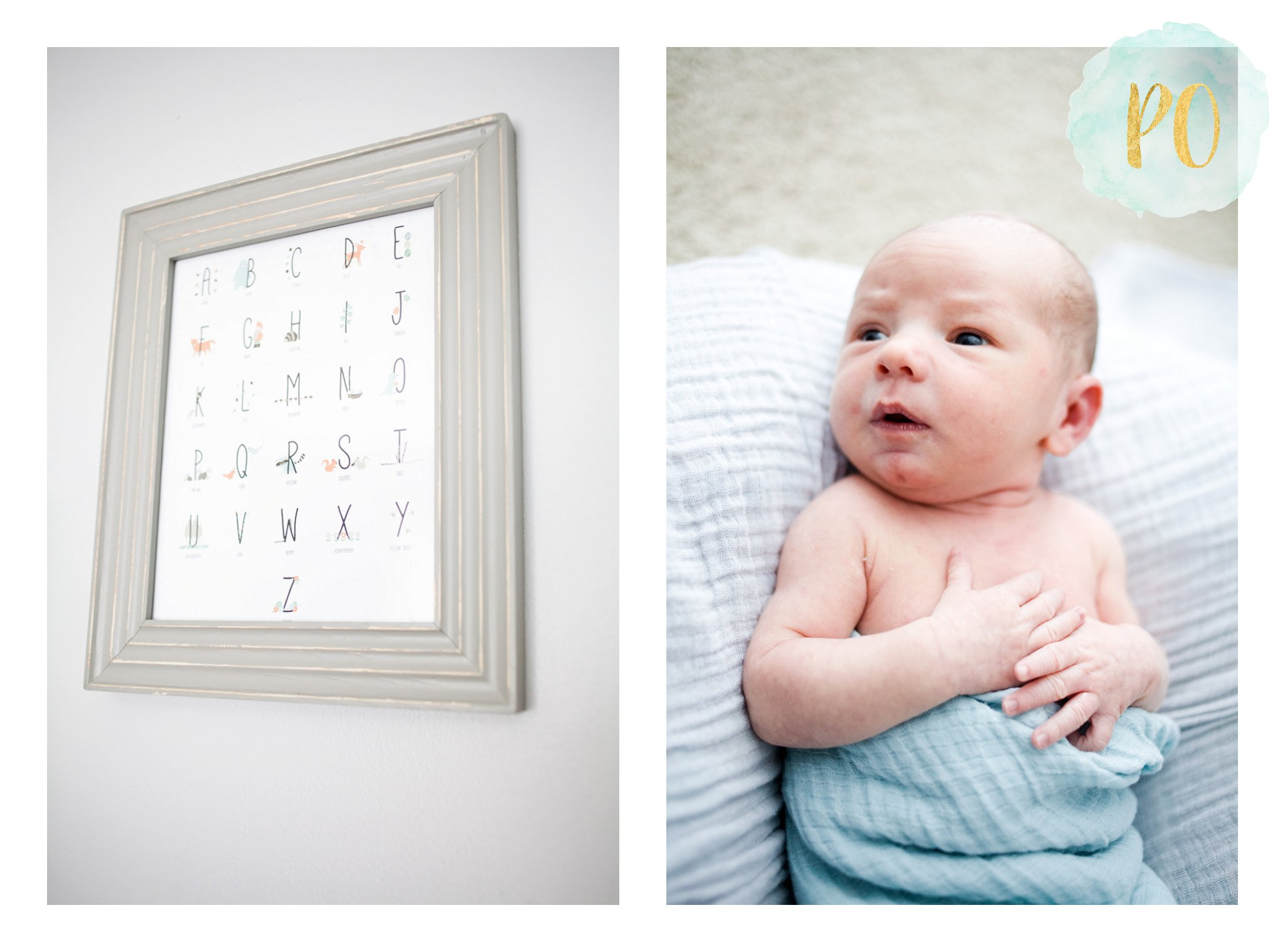 newborn-family-session-spartanburg-sc-photos_0013.jpg