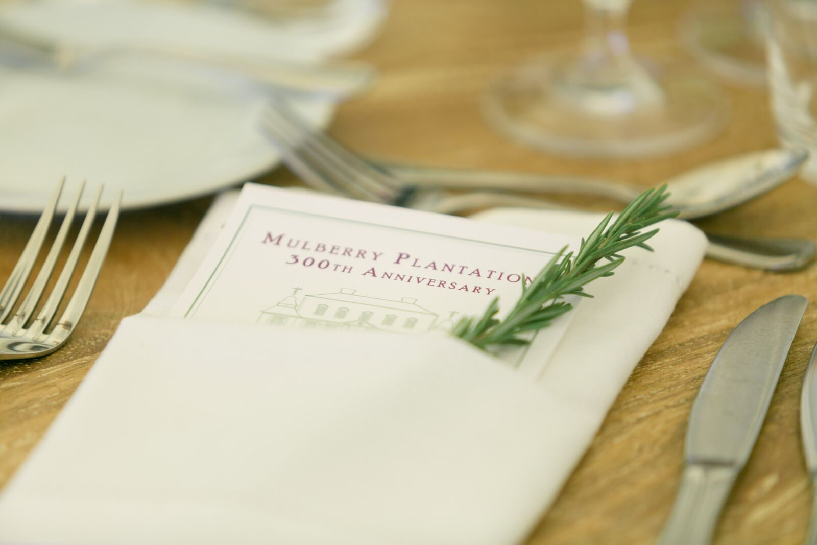 Mulberry Napkin with Rosemary.jpg